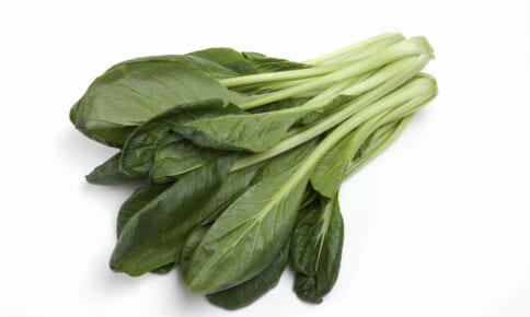 更年期世代が摂りたい栄養たっぷり!小松菜の栄養&レシピ
