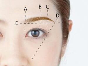 基本となる眉の形を確認しましょう。