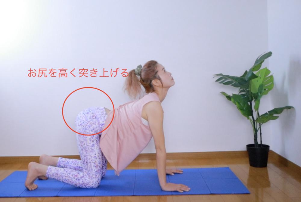吸う息とともに上半身を反らせ、お尻を天井に向かって突き上げるようにします。肩甲骨を寄せて胸を広げると深い呼吸がしやすくなります