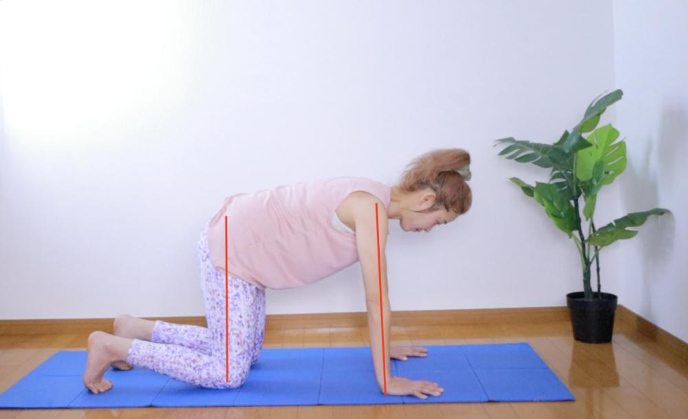 足を腰幅くらいに開き、肩の真下に手首がくるように四つん這いになります。背中が反らないようにお腹を引っ込めて、床と平行になるように整えましょう