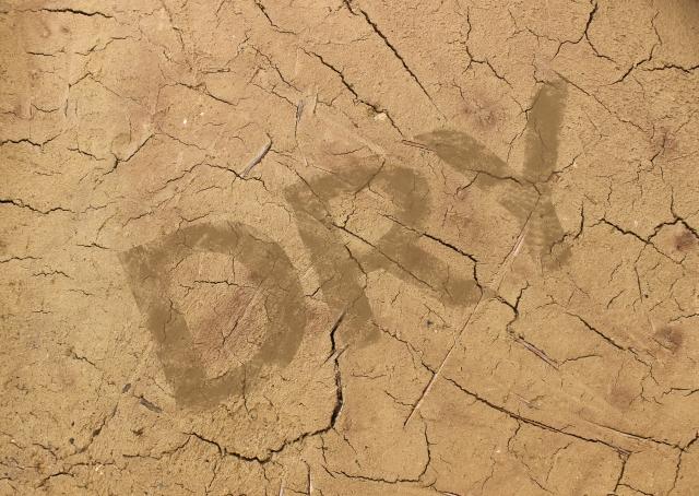40〜50代の肌が乾く本当の理由
