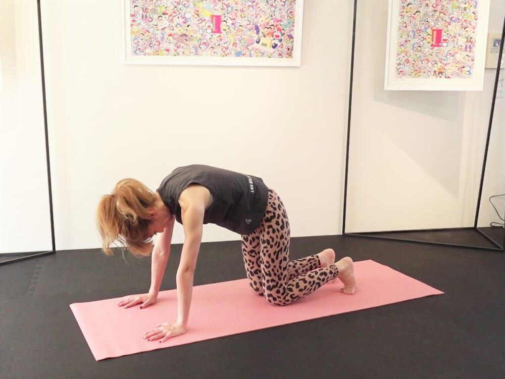手のひらで床を真下に押して、胸の筋肉を使って肩甲骨を真上に押しあげます。つま先で尾てい骨を前に押し出し、恥骨とみぞおちを近づけるようにします。お腹の力を使って骨盤を天井方向に押しあげてください