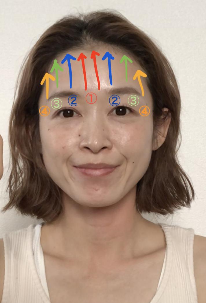 最初は顔の内側(1)から始め、徐々に顔の外側(2)(3)(4)に向かいながらもみほぐしていきます