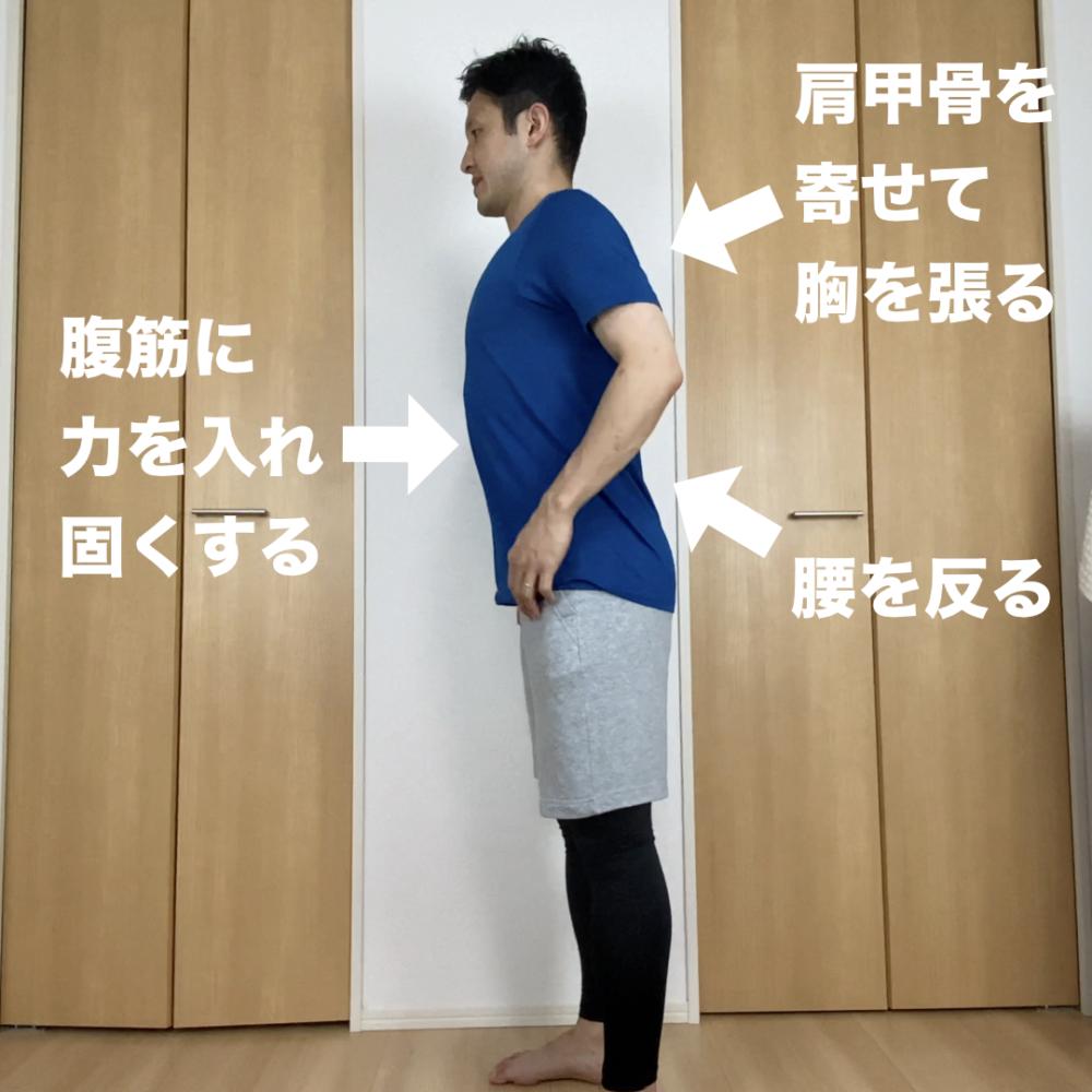 肩甲骨を寄せて胸を張りましょう。腰を反ってから、腹筋に力を入れて固くします