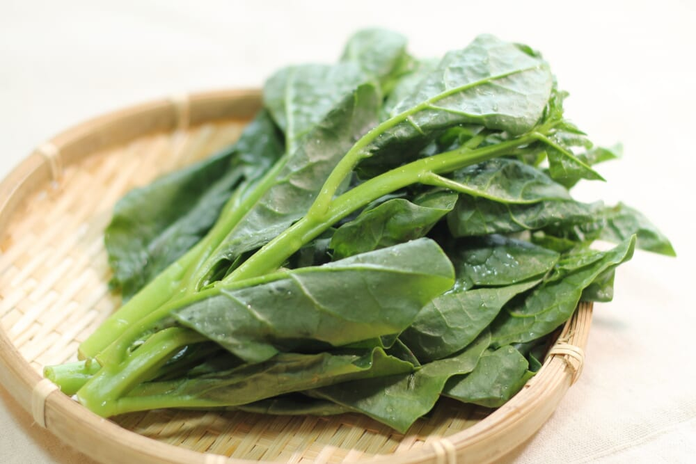 夏バテ予防&腸活に!涼しくツルッと食べられる夏野菜_ツルムラサキ