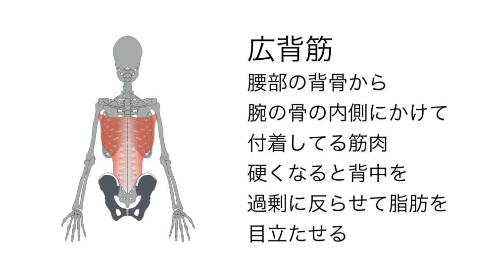 背骨が過剰に反るとハミ肉が目立つ