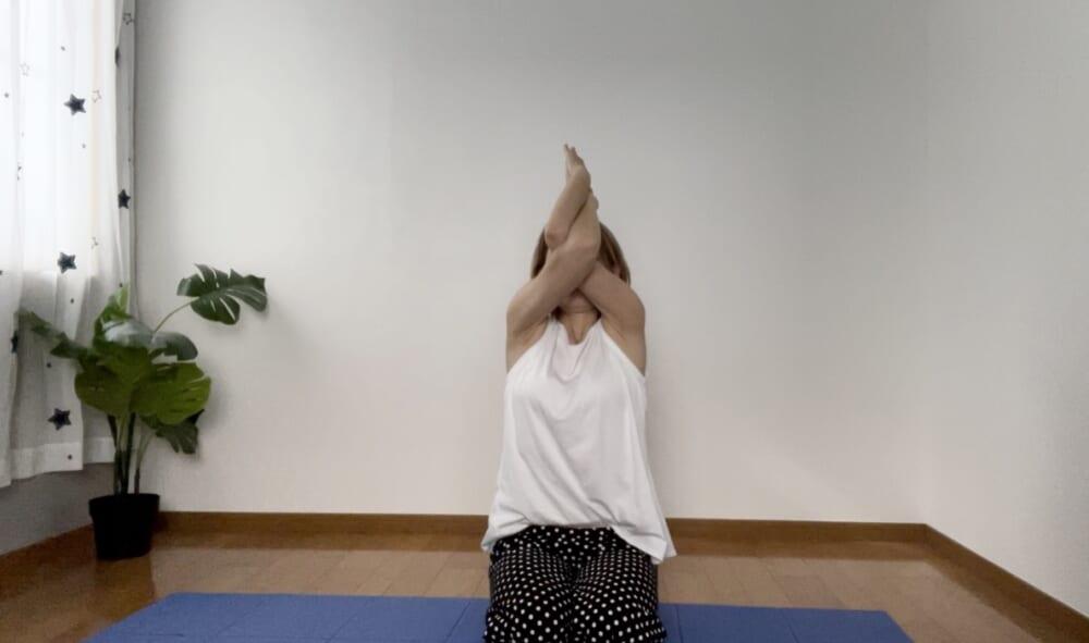 STEP2:腕を上げ下げする