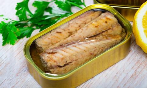 サバ缶で痩せる!?ダイエットに役立つ青魚の食べ方